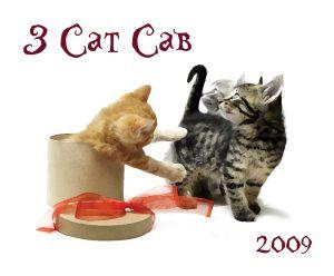 3 cat cab